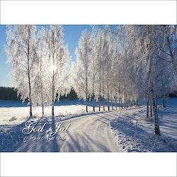 Julkort - Vinter Björkallé