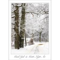 Julkort – Julväg