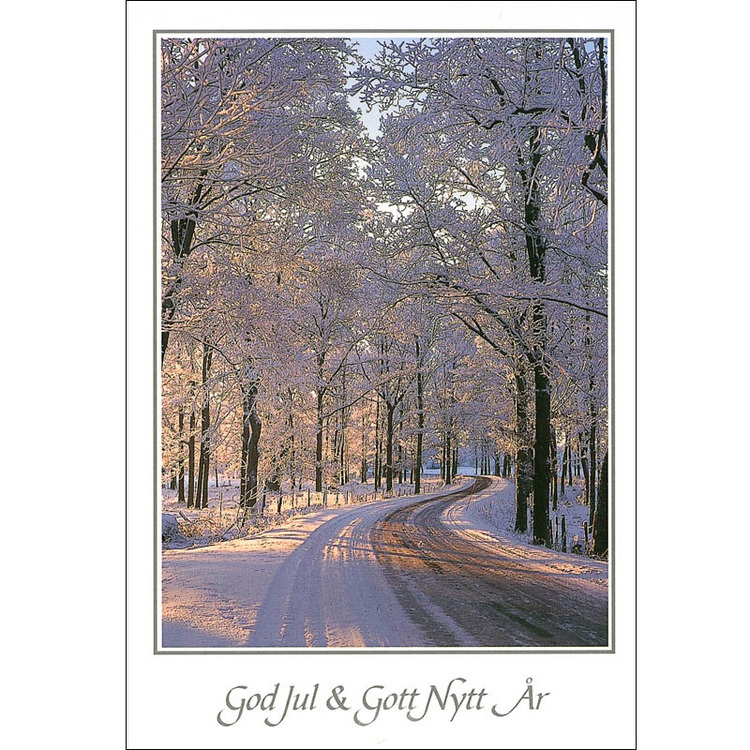Julkort – Vinterallé