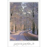 J-7090 Julkort – Vinterallé