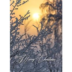 Julkort engelsk text - Merry Christmas