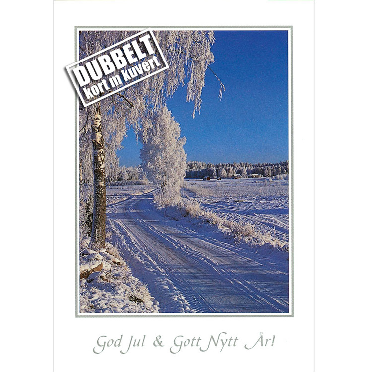 Vinterväg - Dubbelt julkort med kuvert
