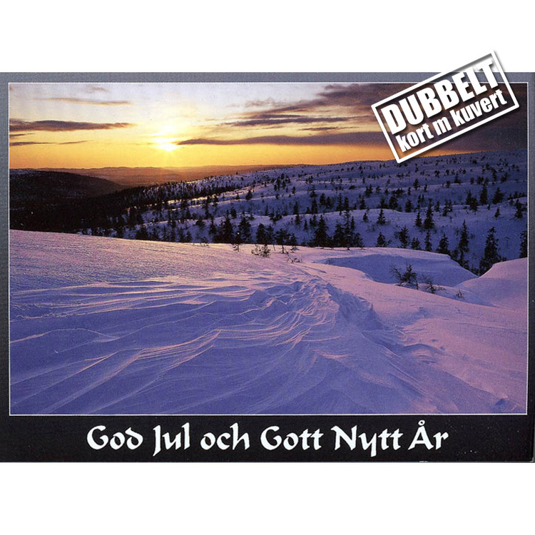 Vinterfjäll - Dubbelt julkort med kuvert
