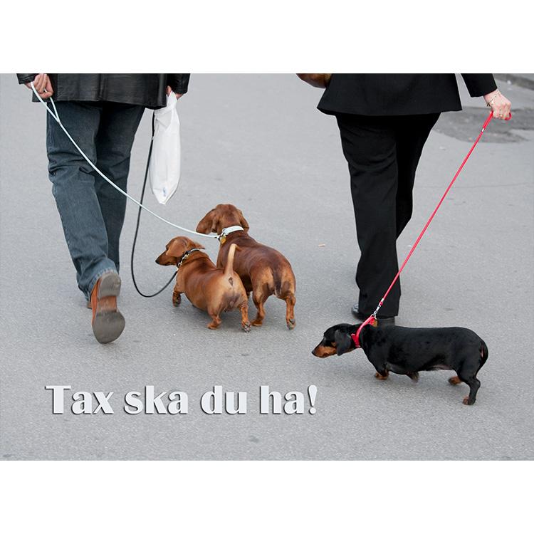 Vykort. Tackkort. Tax ska du ha. Foto: Per Johansson - Joanzon. Kortbutiken säljer detta vykort.