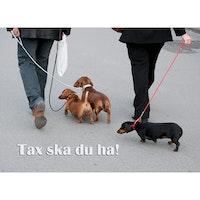 Tax ska du ha