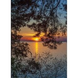 Solnedgång vid insjön