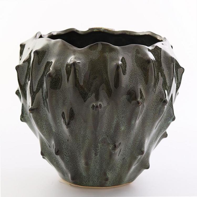 Kaktuskruka