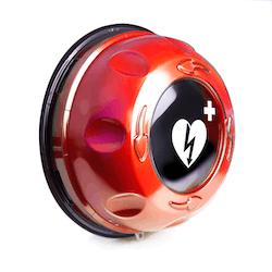 Rotaid Plus utomhusskåp med larm, IP54 (flera färger)