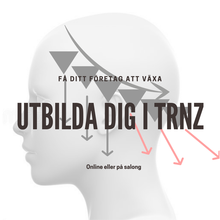 Kurs online - TRNZ avancerad