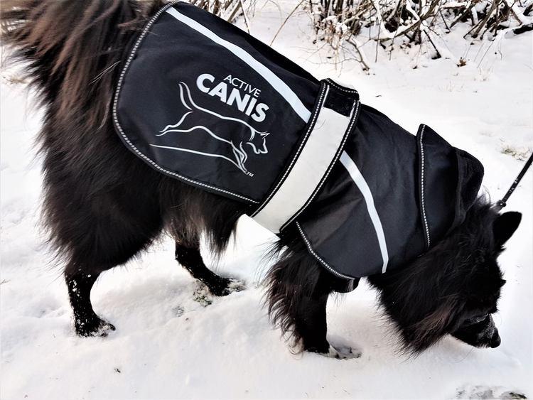 Active Canis Hundtäcke 2 in 1