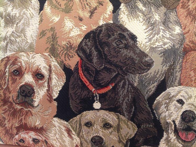 Hobo Brun Hund