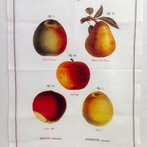 Handduk Äpplen & Päron