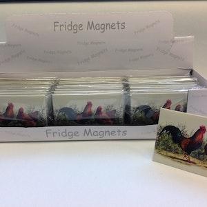 Magnet Tupp & Höna Displaybox