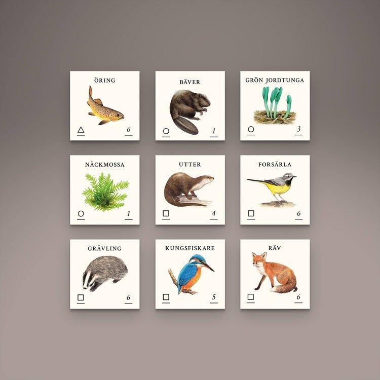 Skogen - Spelet där du fyller skogen med liv inkl. expansion Bäck