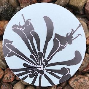 Coaster Kaprifol - Jytte Olsson