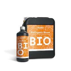 Cellmax Bio Blom