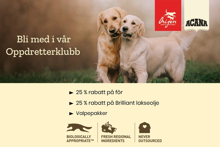 ACANA DOG ADULT SMALL 6kg