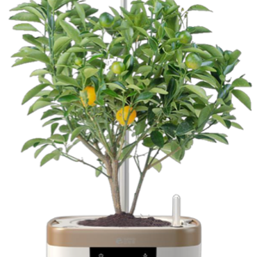 !!!DEMOEX! Odlingskruka Grow Pot Hydroponic LED