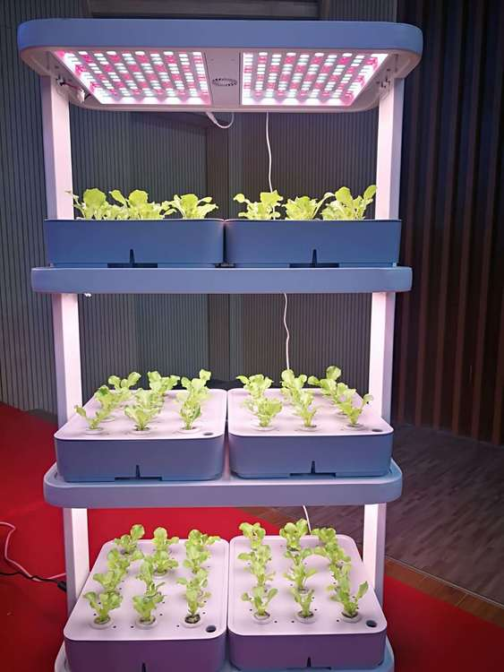 Odlingstorn 72 pods Hydroponic Hyllor Indoor Garden