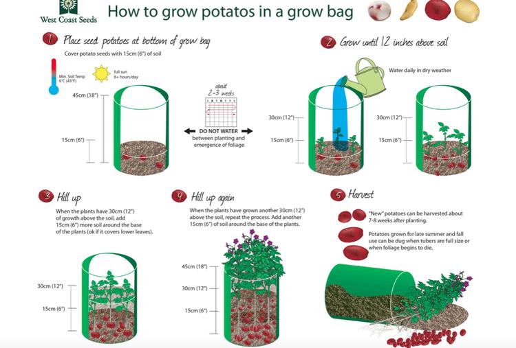 Odlare Potatiskorg -  potatoe's grow bag- 30 liter
