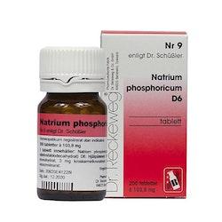 Natrium Phosphoricum Nr9