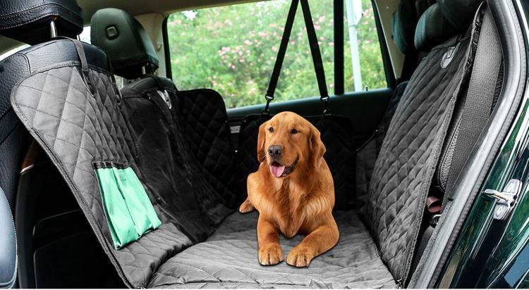 Baksätesskydd för hunden