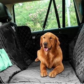 Rear seat protection for the dog
