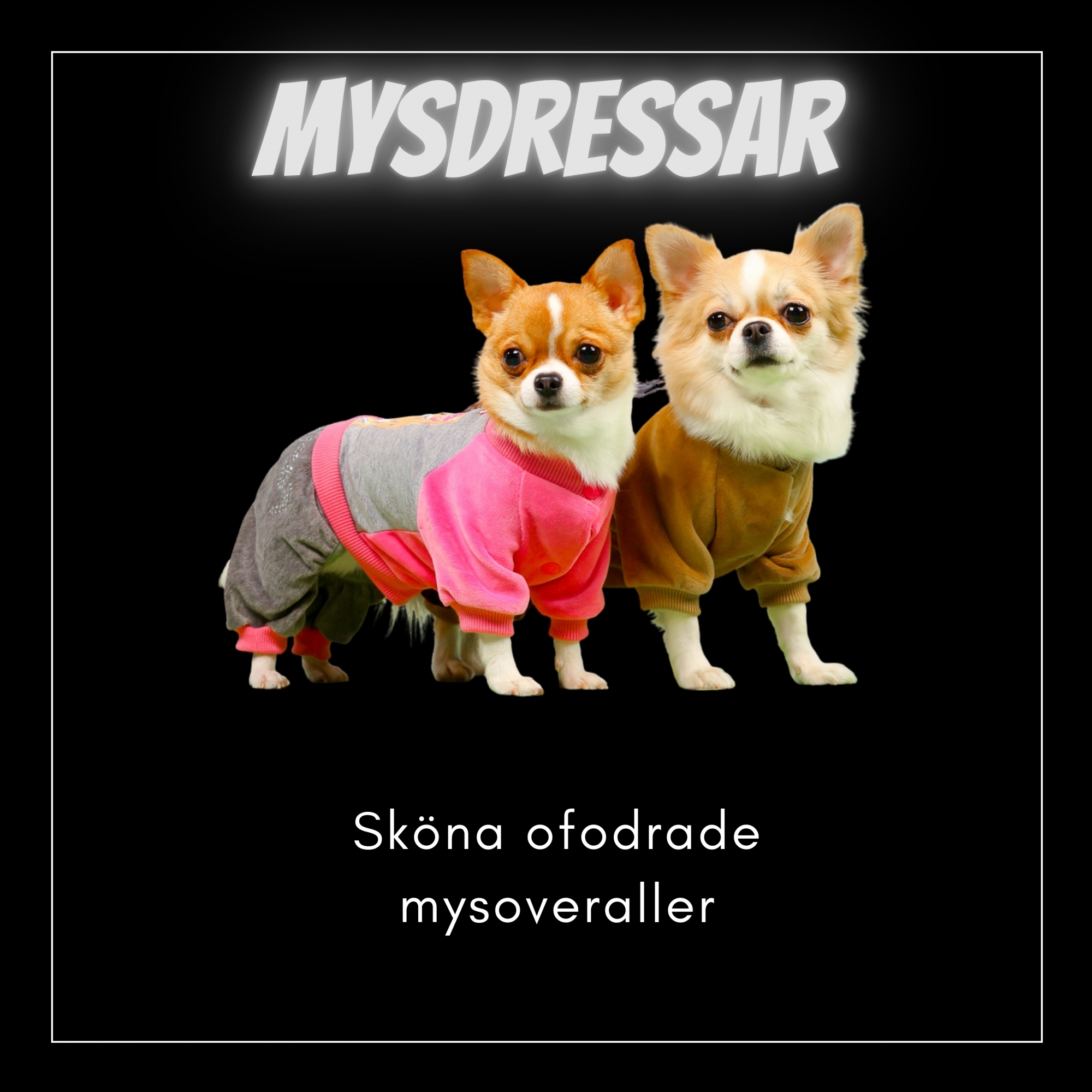 Suits & Mysoveraller - Små hundar - Passion For Pet Fashion
