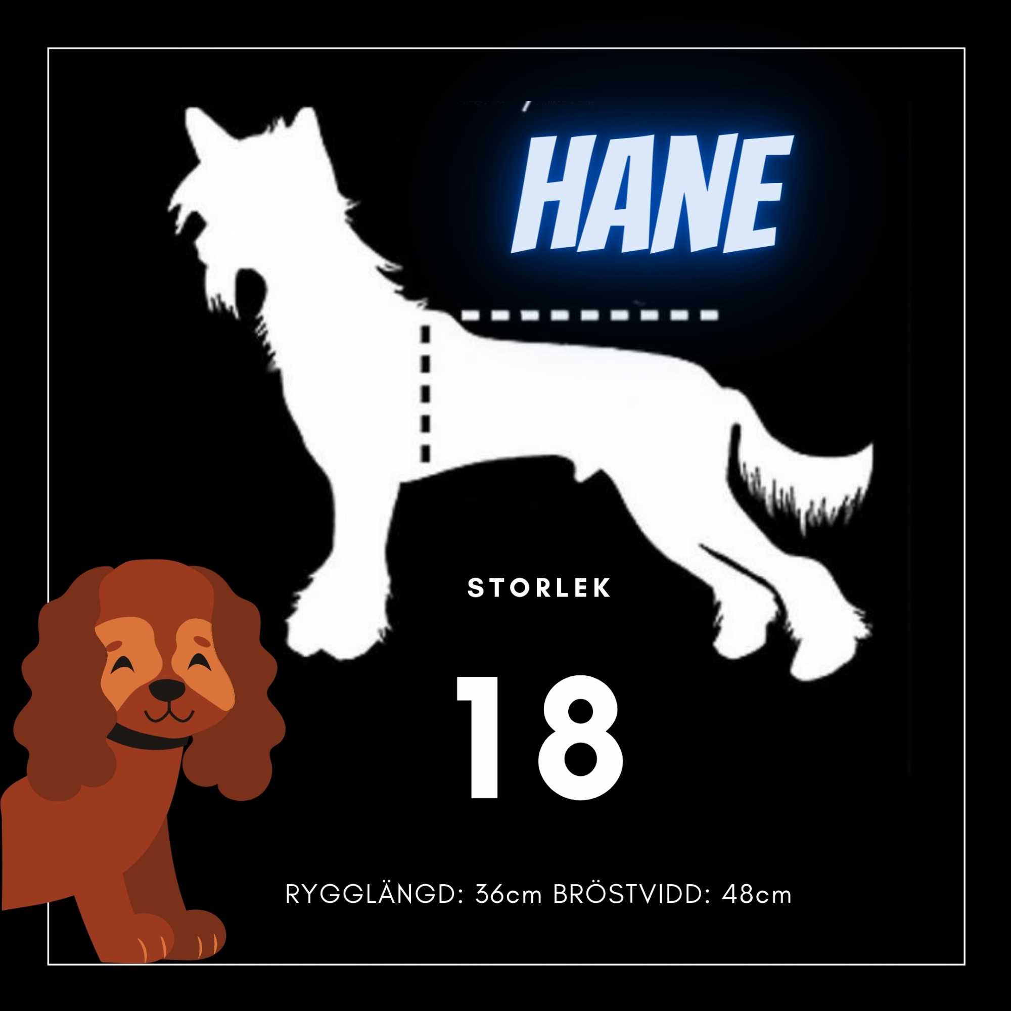 Hane Storlek 18 - Passion For Pet Fashion