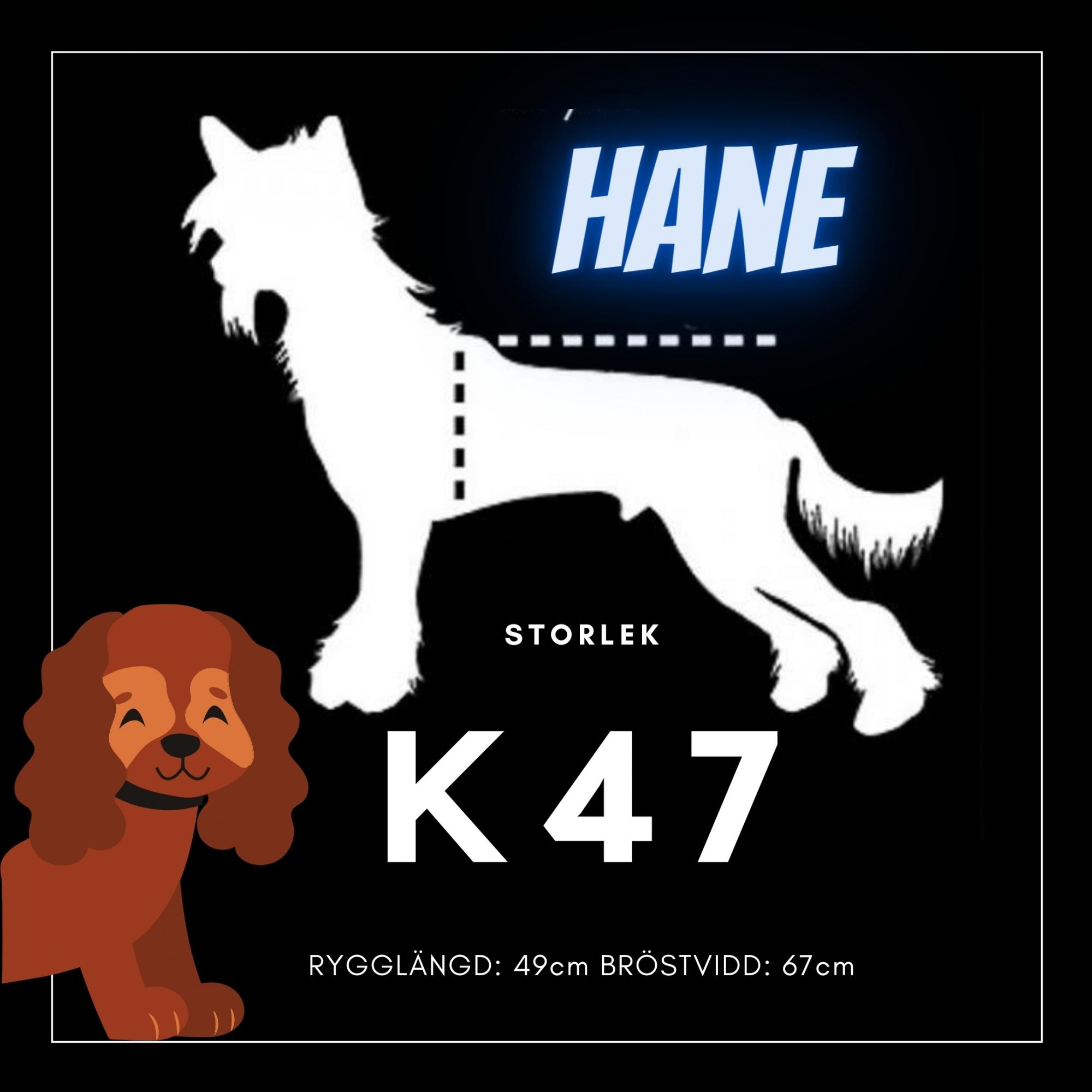 Hane Storlek K47 - Passion For Pet Fashion