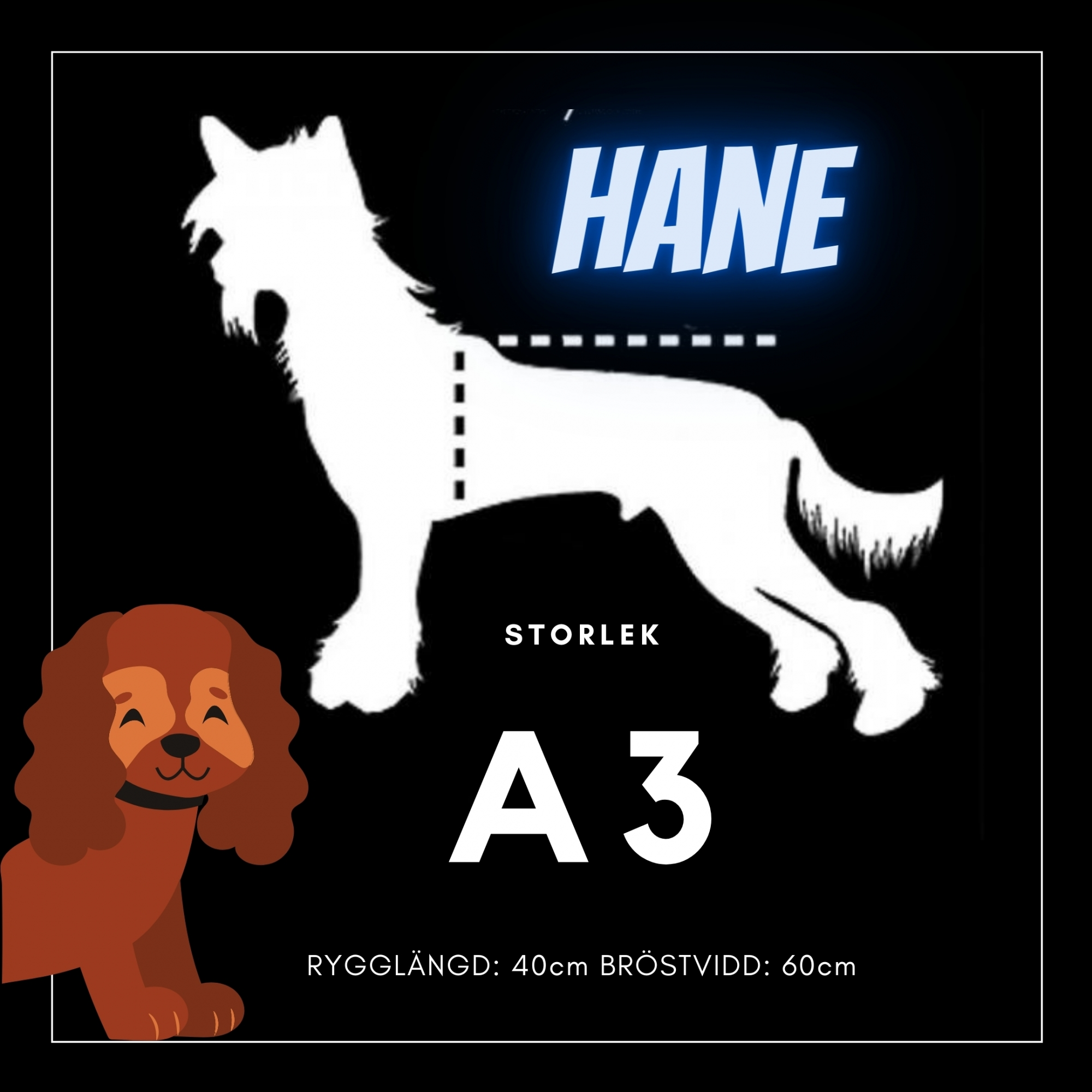 Hane Storlek A3 - Passion For Pet Fashion