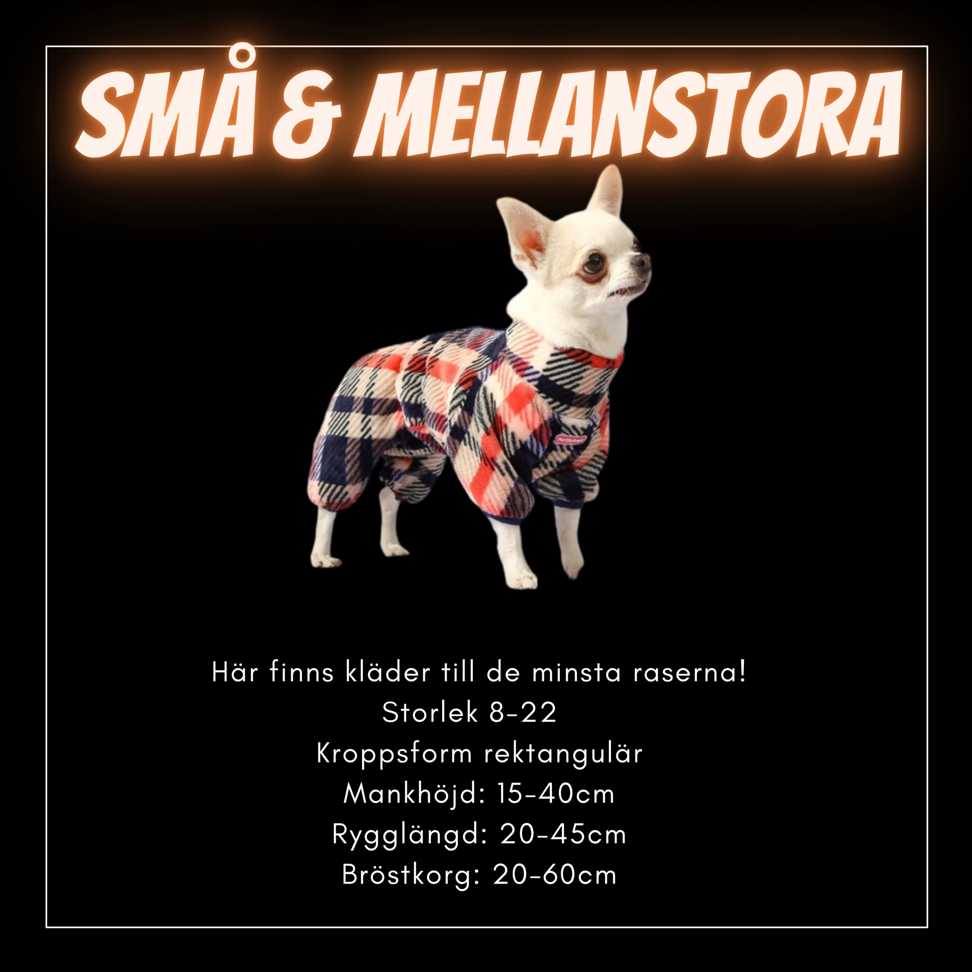 För små och Mellanstora hundar - Passion For Pet Fashion