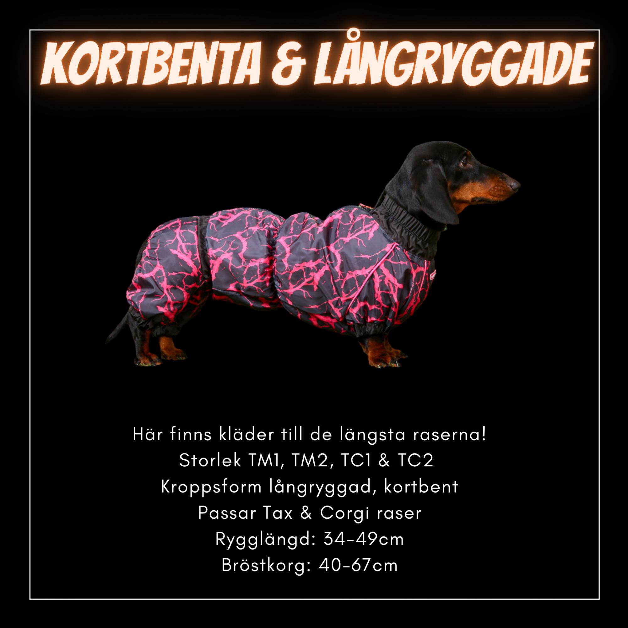 Kortbenta & Långryggade Hundar - Passion For Pet Fashion