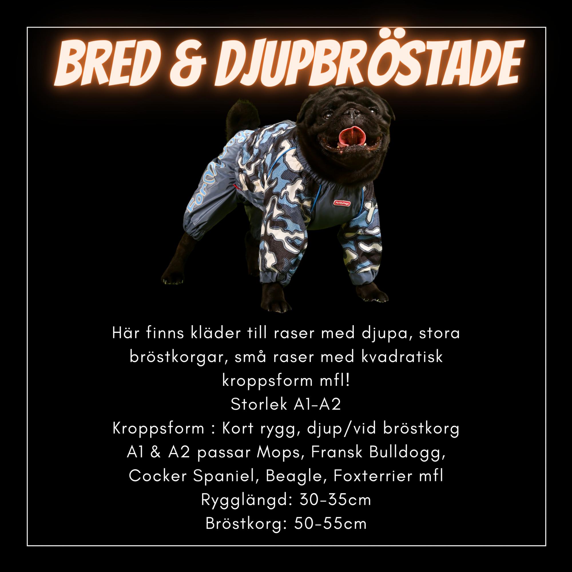 Bred & Djupbröstade Hundar - Passion For Pet Fashion