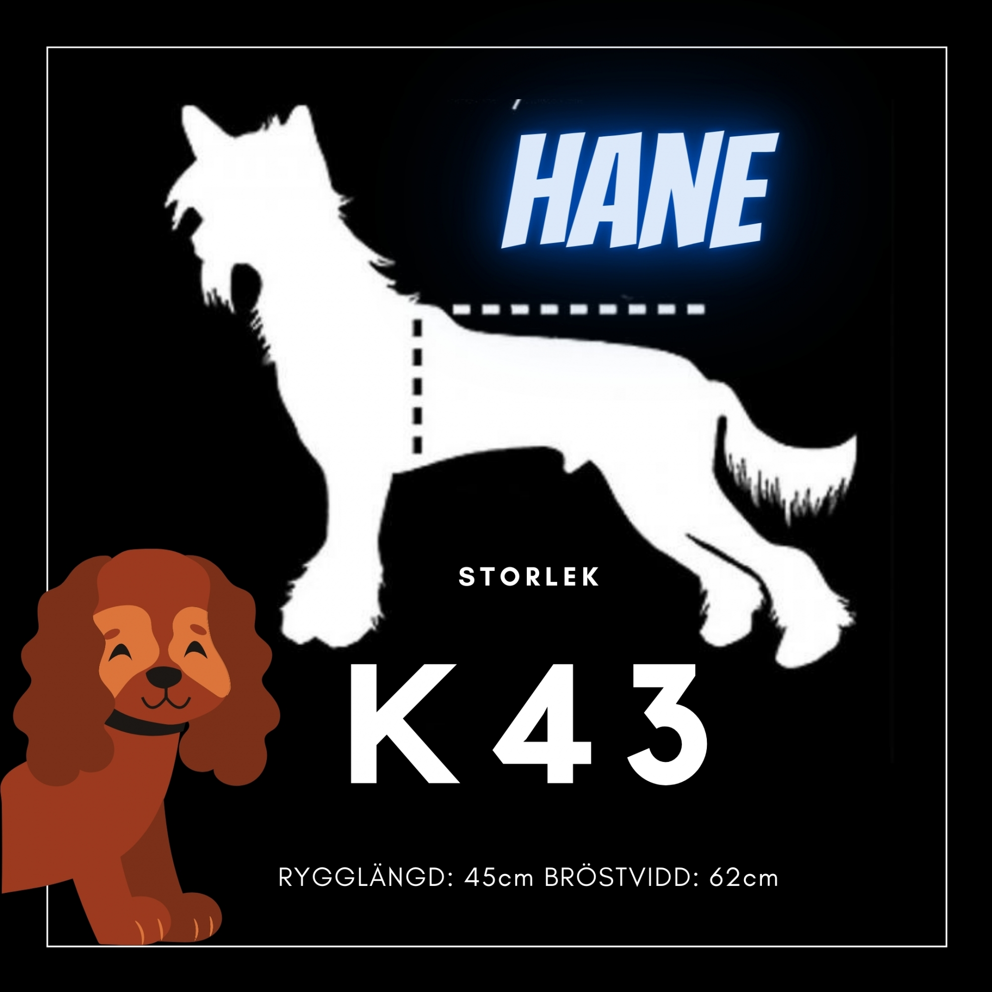 Hane Storlek K43 - Passion For Pet Fashion
