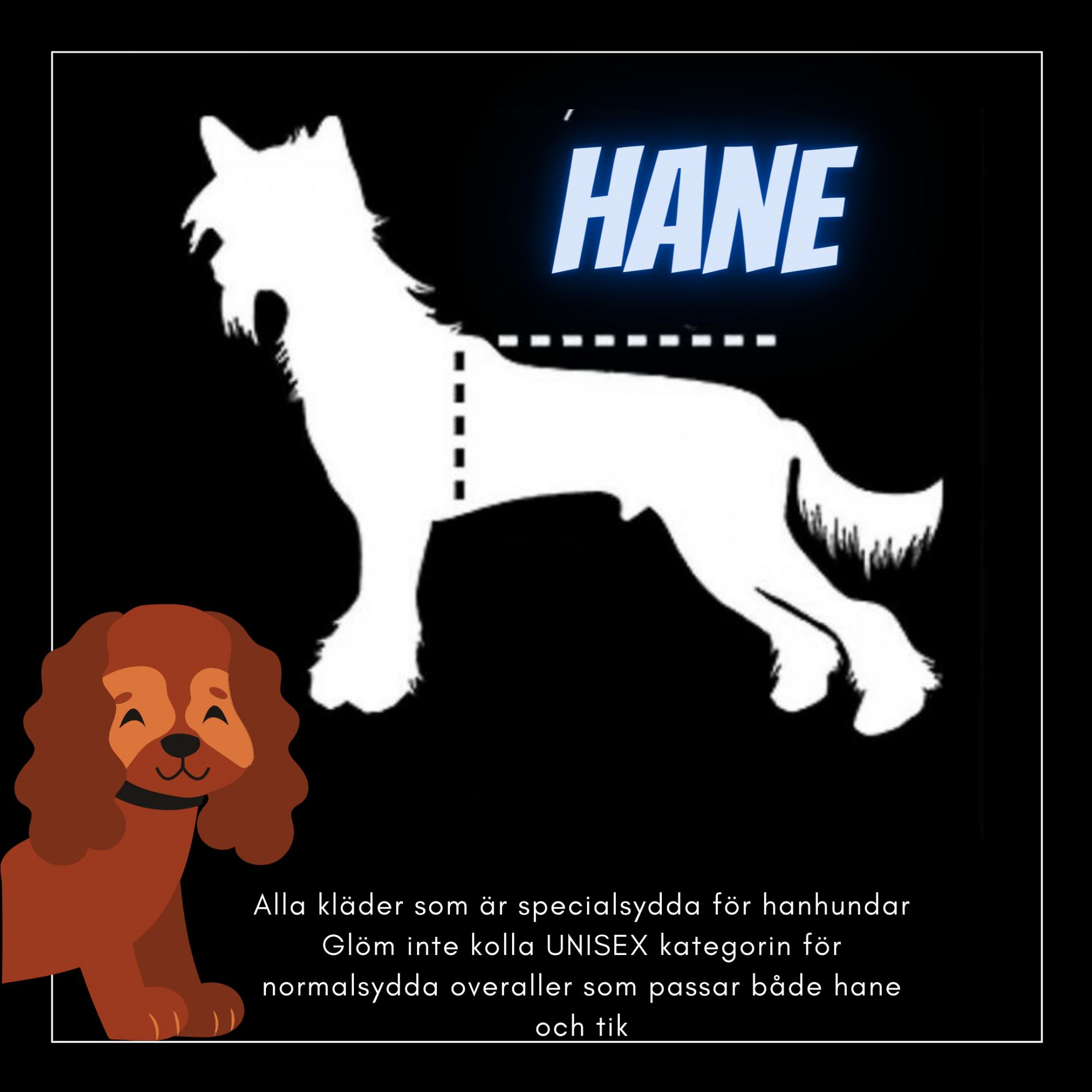 Hane  - Passion For Pet Fashion