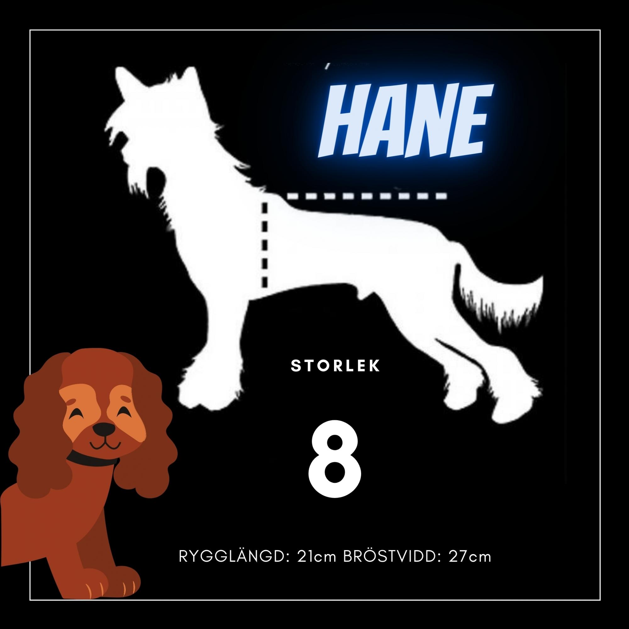 Hane Storlek 8 - Passion For Pet Fashion