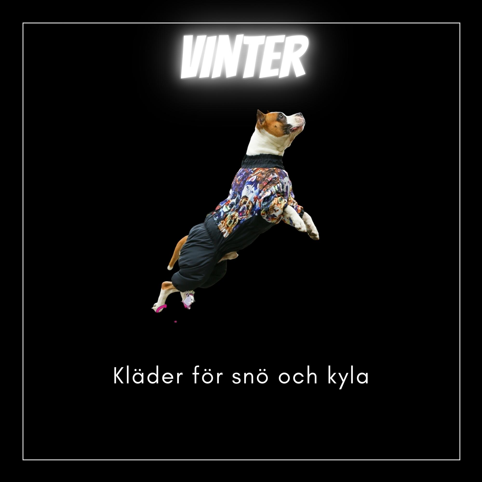 Vinterkläder - Bred & Djupbröstade hundar - Passion For Pet Fashion