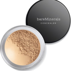 bareMinerals Well-Rested Eye Concealer SPF20 2g