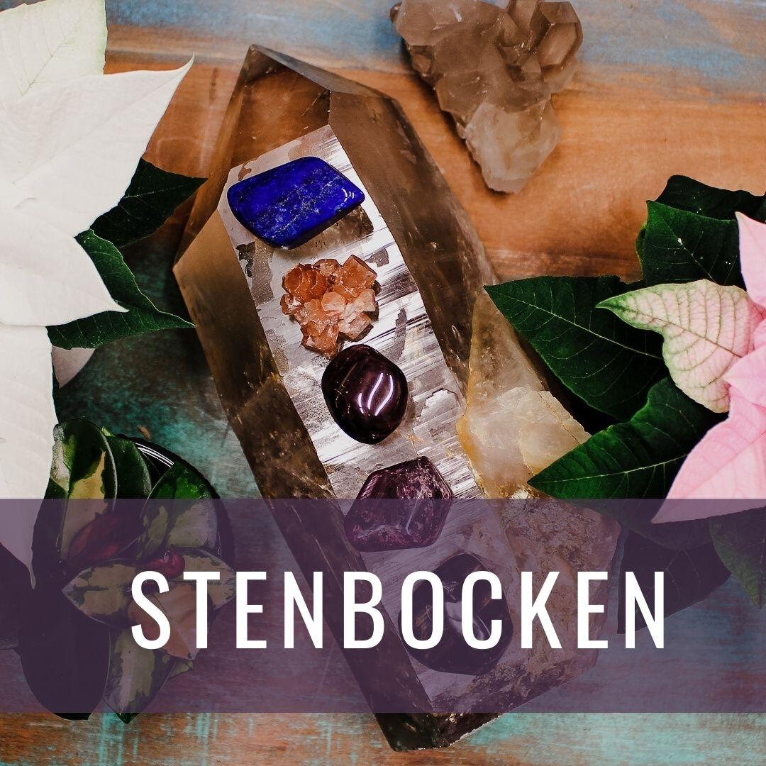Stenbocken - Kristallakademin