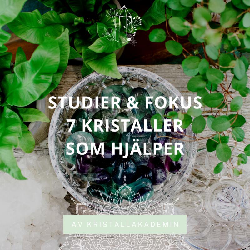 7 Kristaller för studier och fokus