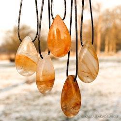 Golden Healer, droppformat halsband