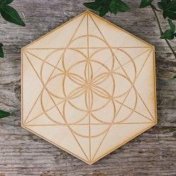 Träplatta med hexagram och livets frö