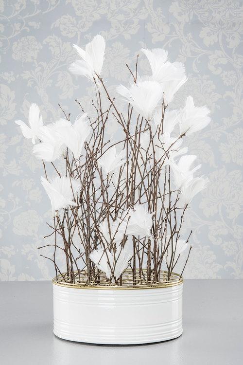 Blomfjärdrar vit