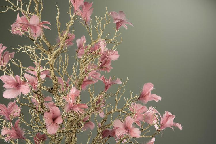 Blomfjädrar Gammelrosa