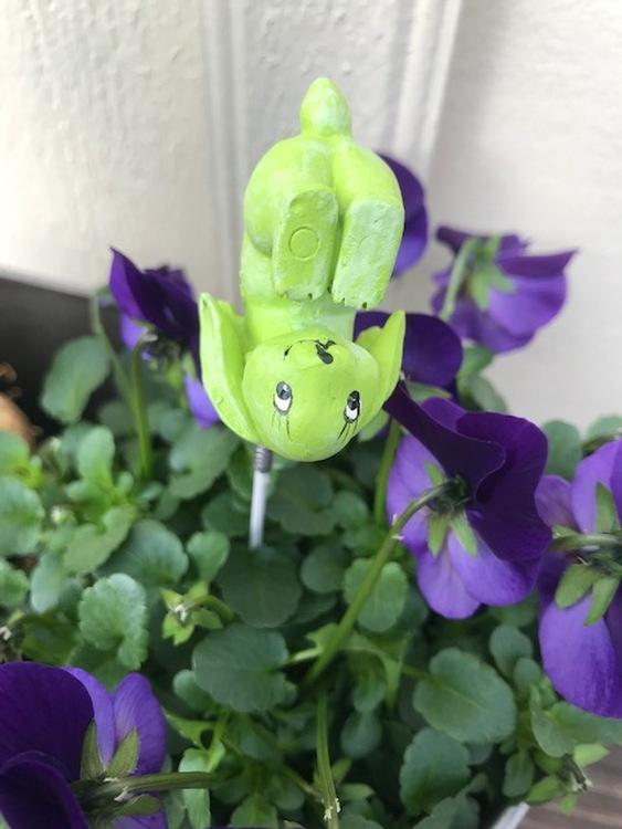 Grön Tokig Kanin