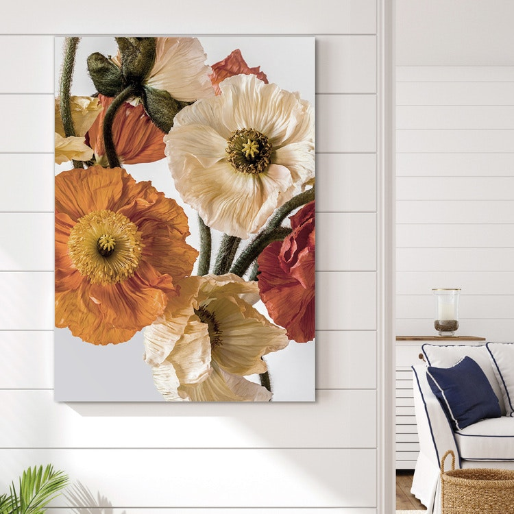 Light-colour Poppies 2 Canvas