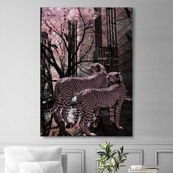 Pink Gepards Canvas