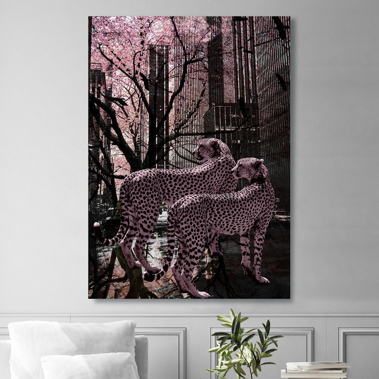 Pink Gepards Canvas