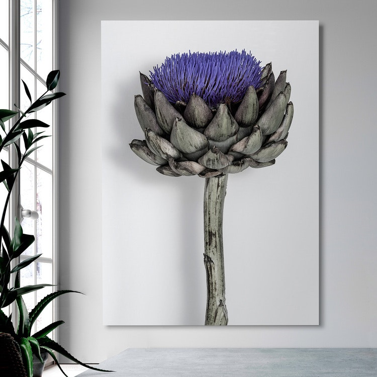 Purple Artichoke on Canvas